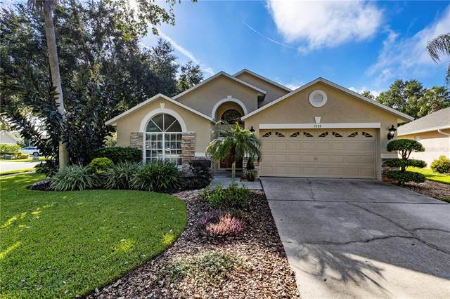 7139 Colony Pointe Drive, Riverview, FL 33578 (MLS #T3330671) :: Cartwright Realty