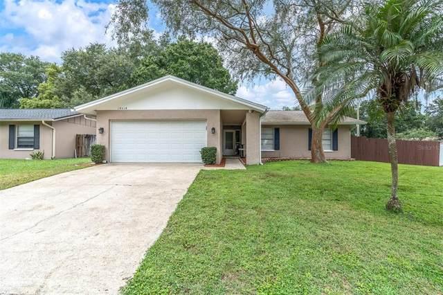14514 Diplomat Drive, Tampa, FL 33613 (MLS #T3330675) :: Bustamante Real Estate