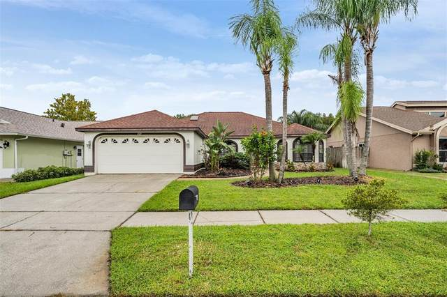 4727 Meadowsweet Court, New Port Richey, FL 34653 (MLS #T3330690) :: Team Buky