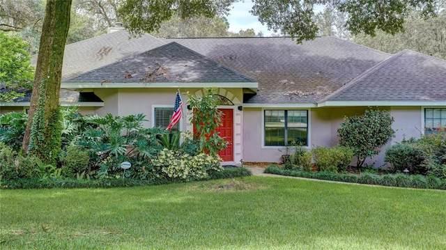 1412 Covered Bridge Drive, Deland, FL 32724 (MLS #T3330700) :: Cartwright Realty