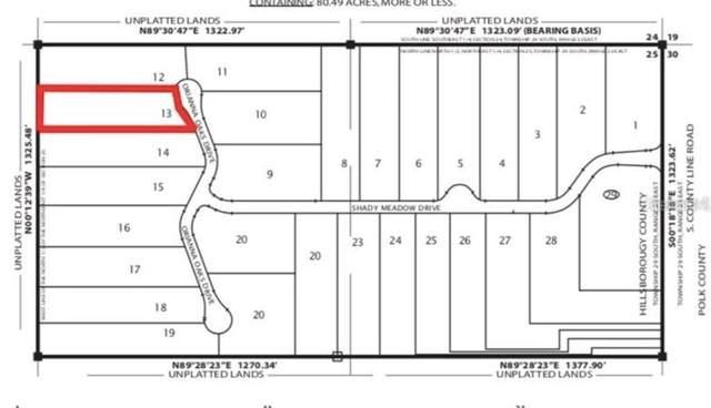 6911 Orianna Oaks Drive, Plant City, FL 33567 (MLS #T3330708) :: Vacasa Real Estate