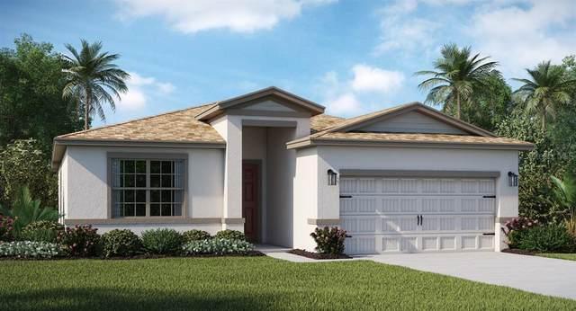 856 Citrus Reserve Boulevard, Davenport, FL 33837 (MLS #T3330712) :: Keller Williams Realty Peace River Partners