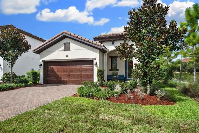 13107 Burns Drive, Odessa, FL 33556 (MLS #T3330713) :: Team Bohannon