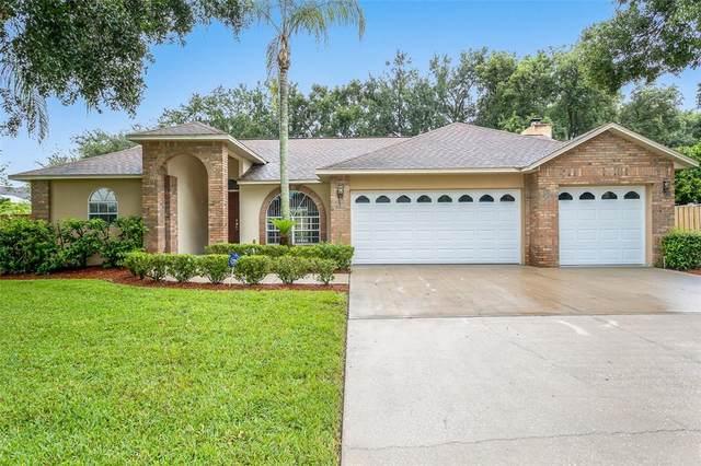 3923 Appletree Drive, Valrico, FL 33594 (MLS #T3330726) :: The Heidi Schrock Team