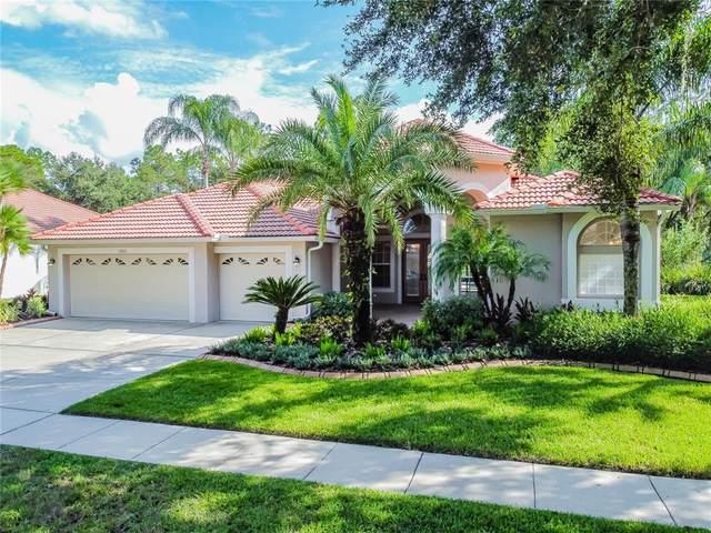 17852 Arbor Greene Drive, Tampa, FL 33647 (MLS #T3330729) :: Team Bohannon