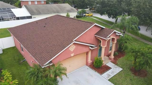11301 Crane Lake Court, Riverview, FL 33569 (MLS #T3330731) :: Bridge Realty Group