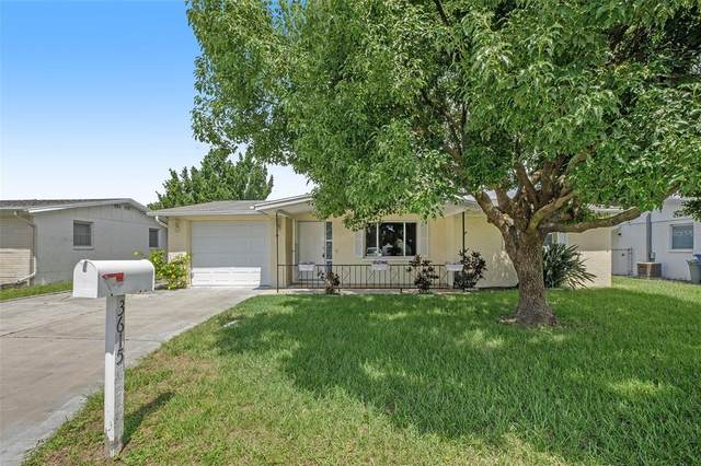 3615 Bigelow Drive, Holiday, FL 34691 (MLS #T3330735) :: Everlane Realty