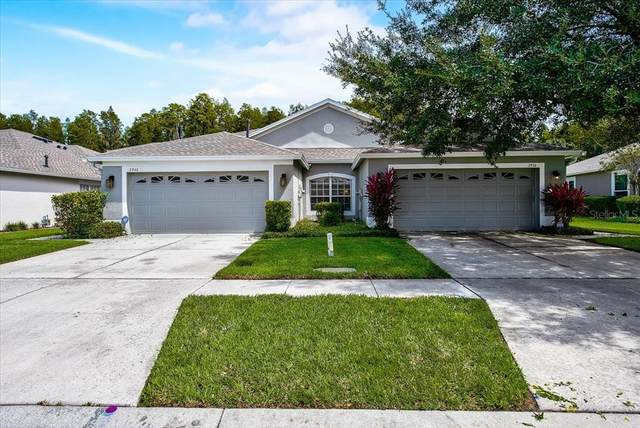 2936 Tanglewylde Drive, Land O Lakes, FL 34638 (MLS #T3330742) :: CARE - Calhoun & Associates Real Estate