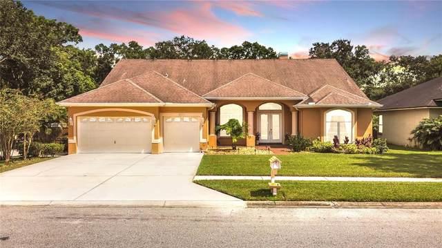 14909 Evershine Street, Tampa, FL 33624 (MLS #T3330746) :: Globalwide Realty