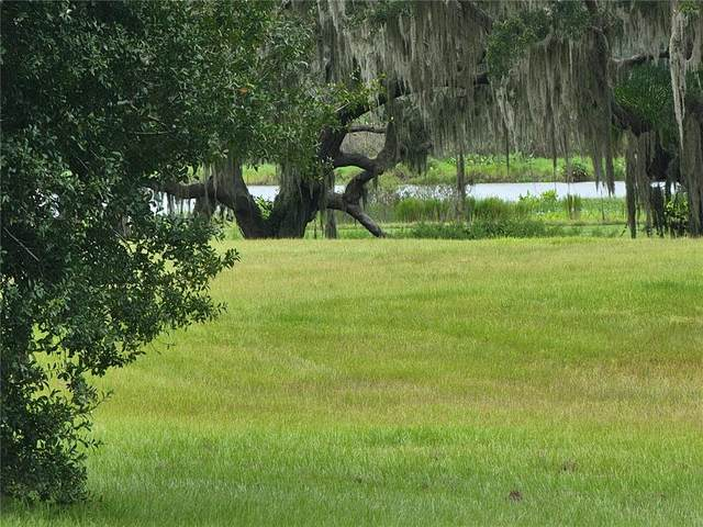12322 Stonelake Ranch Lot 78 Boulevard, Thonotosassa, FL 33592 (MLS #T3330751) :: Zarghami Group