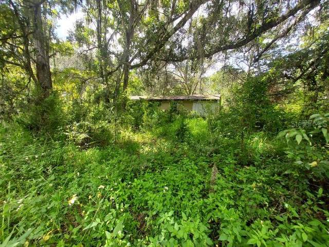 15075 Citrus Way, Brooksville, FL 34601 (MLS #T3330757) :: RE/MAX Elite Realty