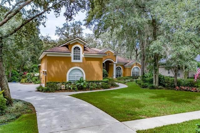 6022 Hammock Hill Avenue, Lithia, FL 33547 (MLS #T3330762) :: Cartwright Realty
