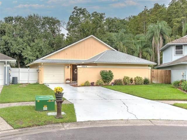 5926 Bitterwood Court, Tampa, FL 33625 (MLS #T3330778) :: Cartwright Realty