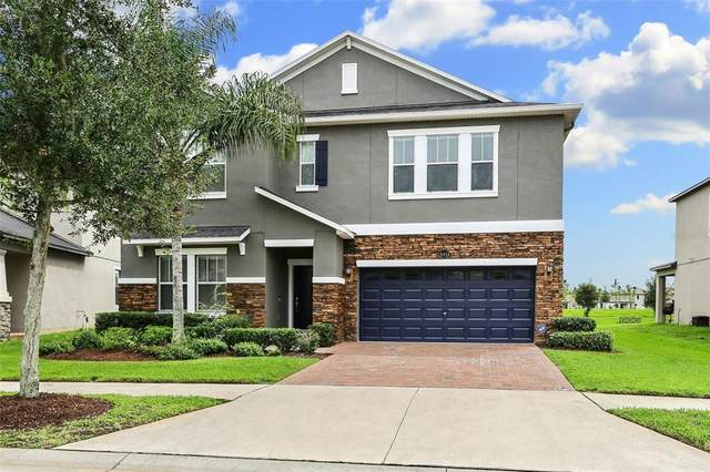 19458 Paddock View Drive, Tampa, FL 33647 (MLS #T3330792) :: Zarghami Group