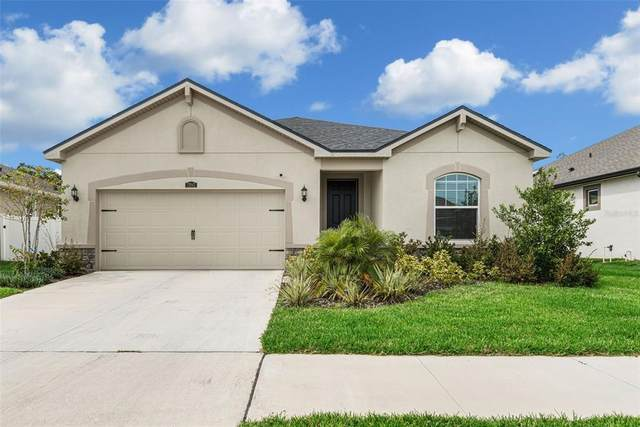 12943 Satin Lily Drive, Riverview, FL 33579 (MLS #T3330795) :: The Curlings Group