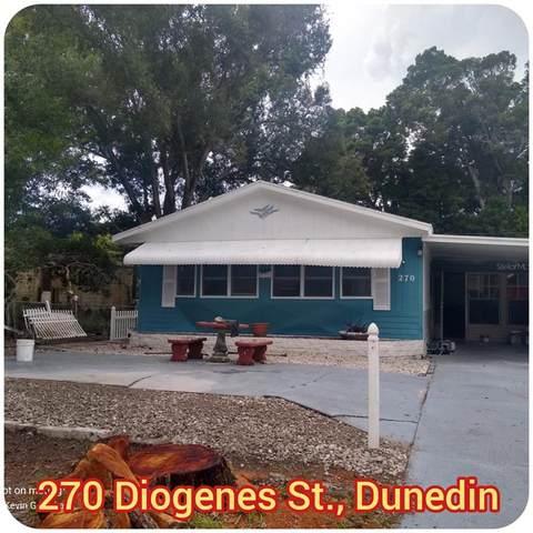 270 Diogenes Street, Dunedin, FL 34698 (MLS #T3330813) :: Zarghami Group