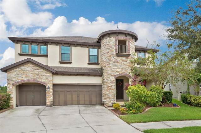 11436 Drifting Leaf Drive, Riverview, FL 33579 (MLS #T3330819) :: Aybar Homes