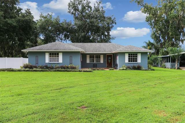 13181 E Us Highway 92, Dover, FL 33527 (MLS #T3330831) :: The Curlings Group