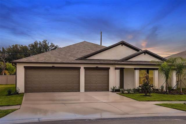 13512 Willow Bluestar Loop, Riverview, FL 33579 (MLS #T3330841) :: The Nathan Bangs Group