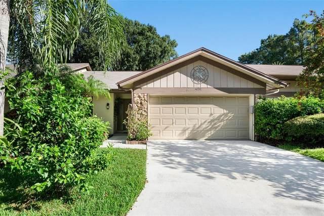 4031 Shoreside Circle, Tampa, FL 33624 (MLS #T3330843) :: The Duncan Duo Team