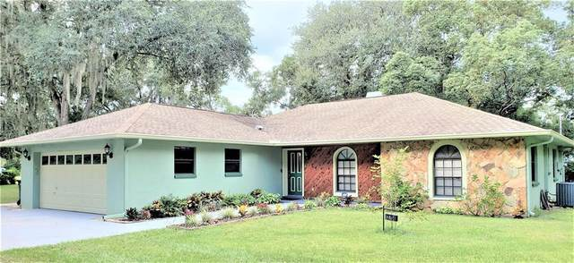 Dover, FL 33527 :: Everlane Realty