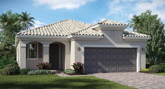 24201 Spartina Drive, Venice, FL 34293 (MLS #T3330861) :: The Robertson Real Estate Group