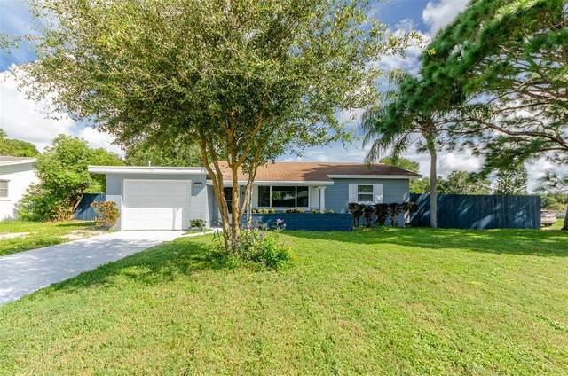 10241 Naranja Street, Seminole, FL 33772 (MLS #T3330870) :: The Paxton Group