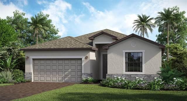2120 Gardenia Avenue, Port Charlotte, FL 33953 (MLS #T3330879) :: Team Turner