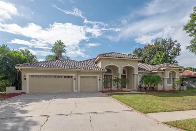 4583 Juniper Drive, Palm Harbor, FL 34685 (MLS #T3330887) :: Globalwide Realty