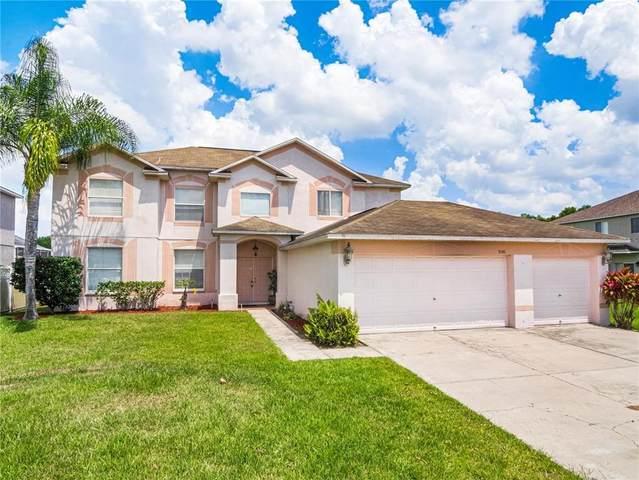 5141 Balsam Drive, Land O Lakes, FL 34639 (MLS #T3330892) :: Team Bohannon