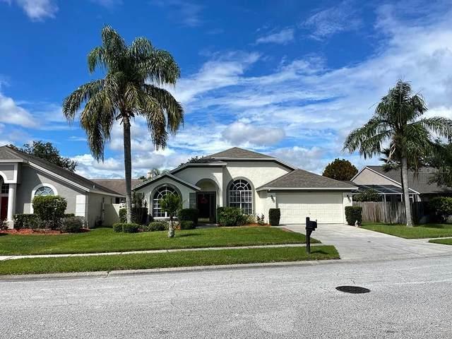 18104 Misty Blue Lane, Tampa, FL 33647 (MLS #T3330911) :: Zarghami Group