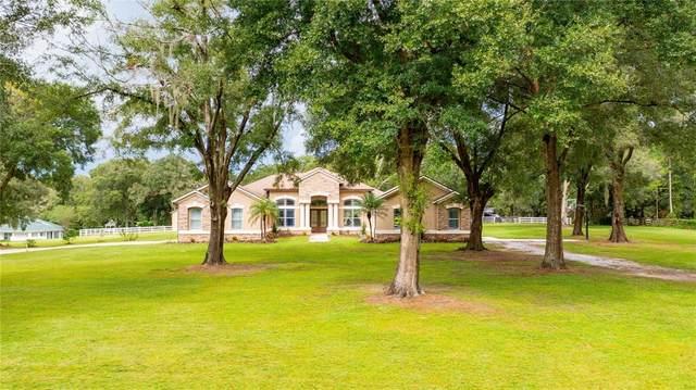 11909 Windsorwood Boulevard, Dade City, FL 33525 (MLS #T3330917) :: Cartwright Realty