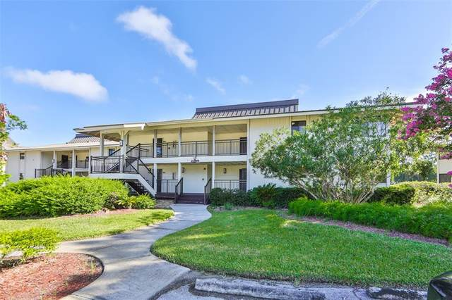 29129 Bay Hollow Drive #3213, Wesley Chapel, FL 33543 (MLS #T3330923) :: Cartwright Realty
