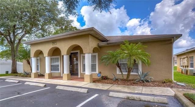 4236 W Linebaugh Avenue, Tampa, FL 33624 (MLS #T3330926) :: Team Turner