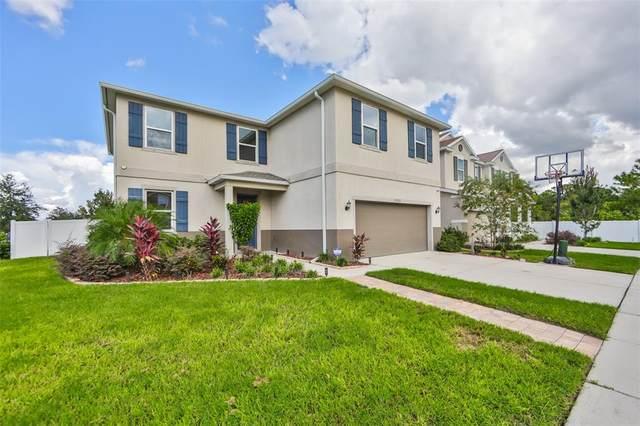 10702 Aldo Moro Drive, Wimauma, FL 33598 (MLS #T3330932) :: Zarghami Group