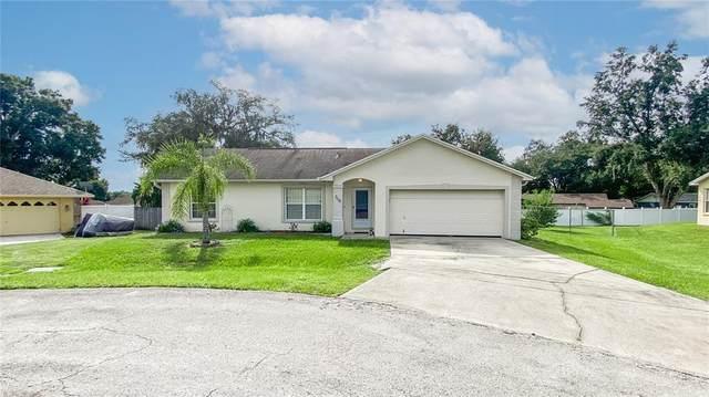 7116 Scenic Place, Lakeland, FL 33810 (MLS #T3330951) :: Bustamante Real Estate