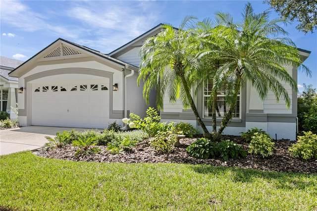 18018 Arbor Crest Drive, Tampa, FL 33647 (MLS #T3330958) :: Team Bohannon