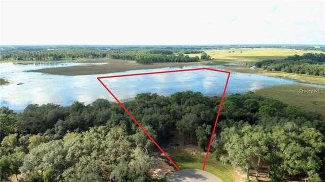 3170 Bright Lake Circle, Leesburg, FL 34748 (MLS #T3330976) :: CENTURY 21 OneBlue