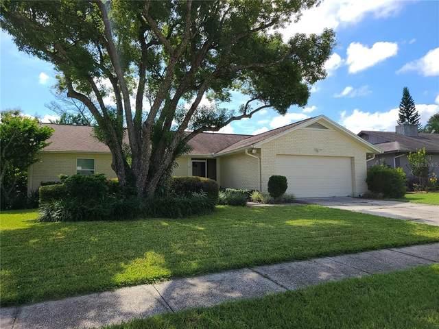 811 Tarawood Lane, Valrico, FL 33594 (MLS #T3330982) :: The Nathan Bangs Group