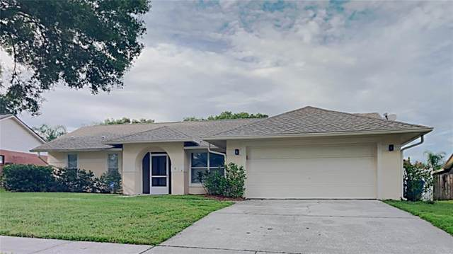 1614 Dusty Rose Lane, Brandon, FL 33510 (MLS #T3331005) :: Alpha Equity Team