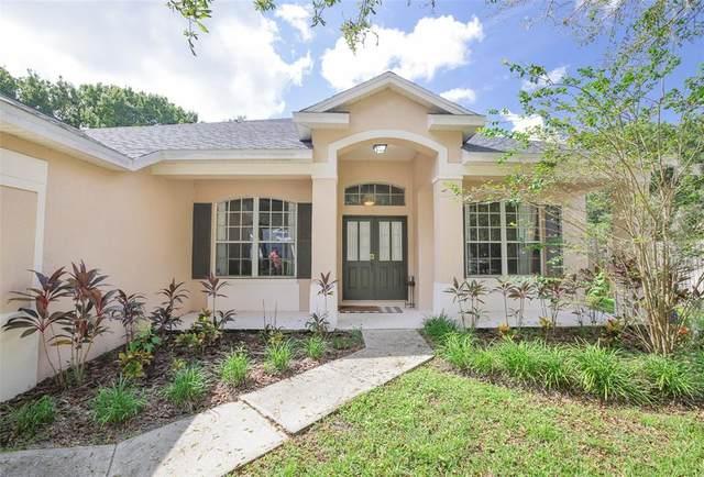6913 Potomac Circle, Riverview, FL 33578 (MLS #T3331014) :: Cartwright Realty