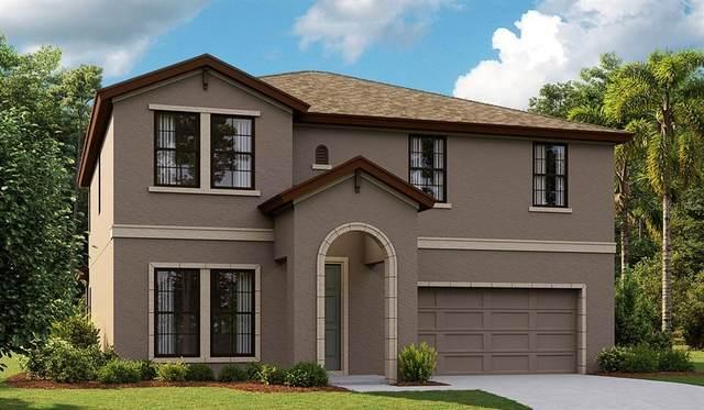 12617 Horseshoe Bend, Lithia, FL 33547 (MLS #T3331018) :: Cartwright Realty