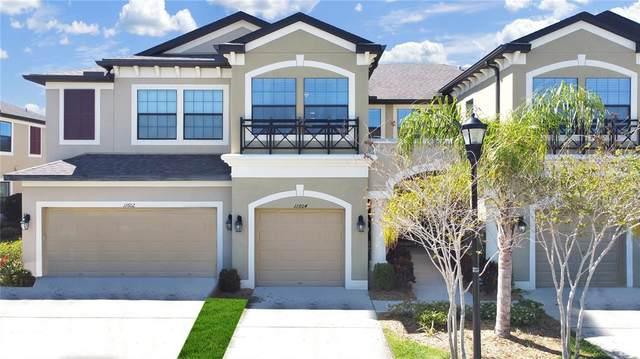 11604 Crowned Sparrow Lane, Tampa, FL 33626 (MLS #T3331019) :: Team Bohannon