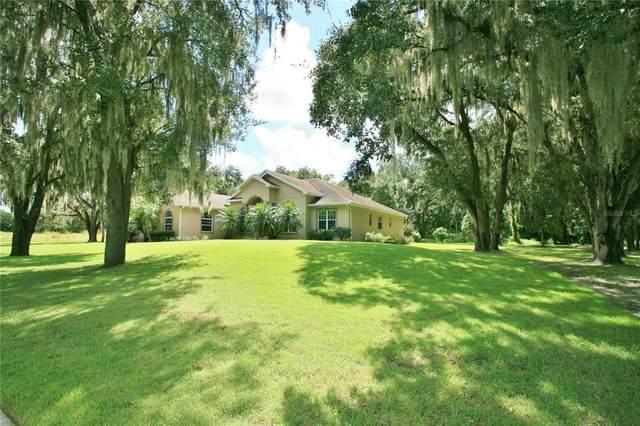 605 Graceful Oaks Court, Plant City, FL 33563 (MLS #T3331034) :: Zarghami Group