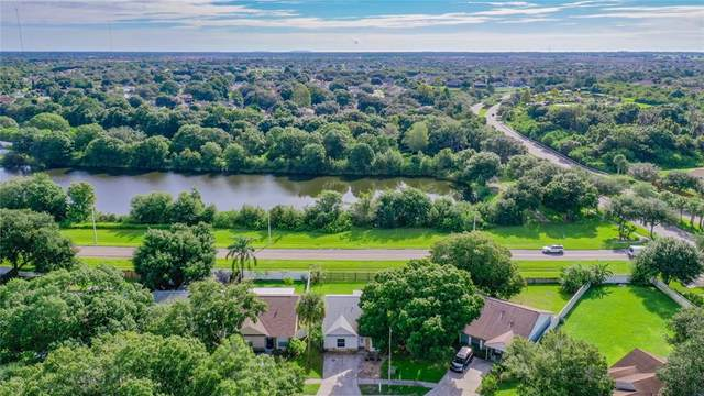 13322 Laraway Drive, Riverview, FL 33579 (MLS #T3331037) :: Bustamante Real Estate