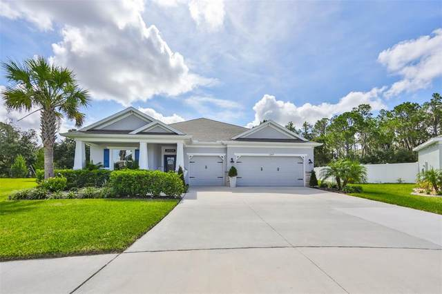 12429 Brick Cobblestone Drive, Riverview, FL 33579 (MLS #T3331038) :: Bustamante Real Estate