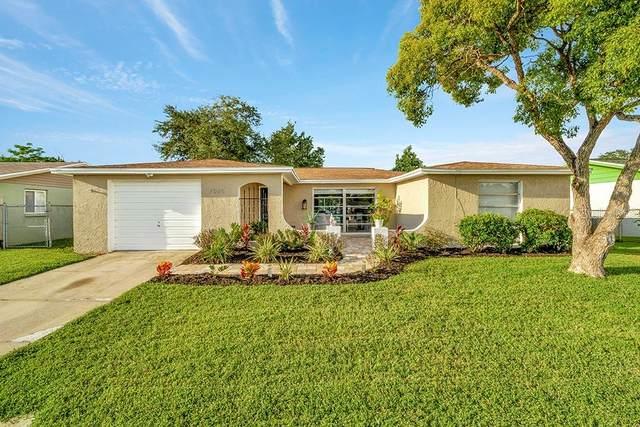 7025 Heath Drive, Port Richey, FL 34668 (MLS #T3331043) :: Team Bohannon