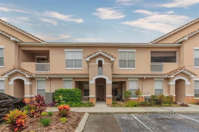 17920 Villa Creek Drive #17920, Tampa, FL 33647 (MLS #T3331044) :: Cartwright Realty
