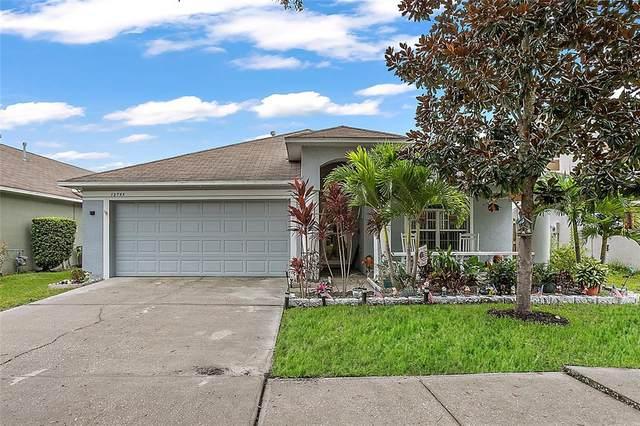 12753 Standbridge Drive, Riverview, FL 33579 (MLS #T3331050) :: Cartwright Realty