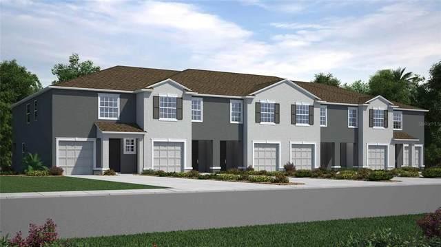 32817 Pez Landing Lane, Wesley Chapel, FL 33543 (MLS #T3331062) :: Cartwright Realty